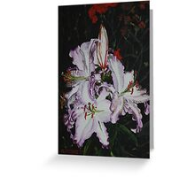 Night Time Lilies Greeting Card