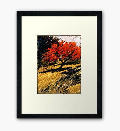 roter Apfel Framed Print