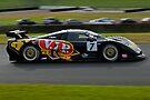 Australian GT Championship   EASTERN CREEK RACEWAY   Sports Car Carnival 2010   9 Tony Quinn   Mosler MT900 GT3 by DavidIori