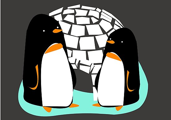 The Two Penguins by Jessica Slater