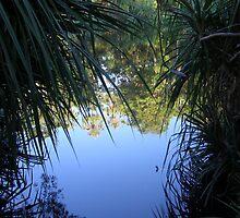 Boodjamulla Water by weigi