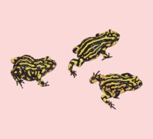 Corroboree frogs without lines by Laura Grogan