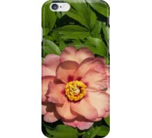 Exotic Beauty - Unusual Peony Basking in the Sunshine - a Vertical View iPhone Case/Skin