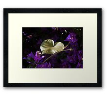 A Heart of Gold Leaf of Morning Glory Framed Print