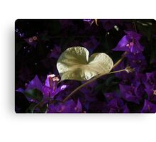 A Heart of Gold Leaf of Morning Glory Canvas Print