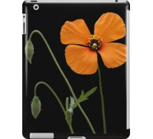A Touch Of Orange iPad Case/Skin
