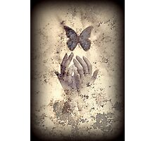 Nostalgic Butterfly Blues Photographic Print