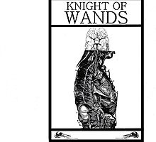 Knight of Wands by Peter Simpson