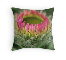 Aster Alpinus Rockery plant Throw Pillow