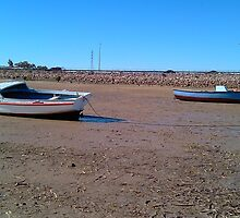 Old Boat at Port Augusta 3 by Rob Moffatt