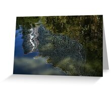 Capricious Green Sunspots, Shadows and Reflections Greeting Card