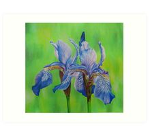 Iris Blue Tiger Art Print