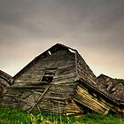 Seen Better Days!!! by Larry Trupp