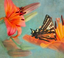 Stopping For Just A Sip Of Nectar by Diane Schuster
