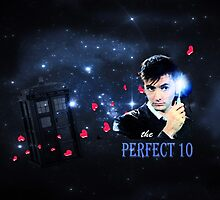 The Perfect 10 by Nadya Johnson