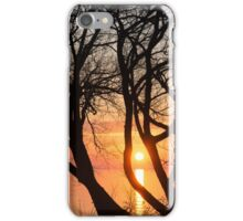 Sunrise Through the Chaos of Tree Branches iPhone Case/Skin