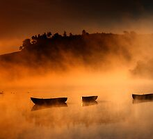 Shadows and reflections... by David Mould