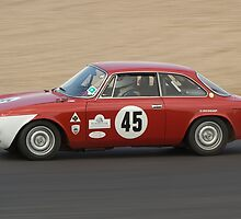 Alfa Romeo 1750 GTV by Willie Jackson