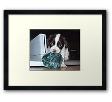 Wii Lil Sock Lover Framed Print