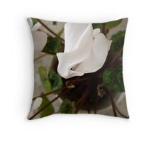 Tranquility in the bedroom Throw Pillow