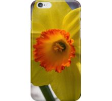 Happy Spring Blossom iPhone Case/Skin