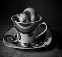 Cup of Tea? by Ellen Jones
