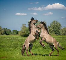 It takes two to tango by Henri Ton
