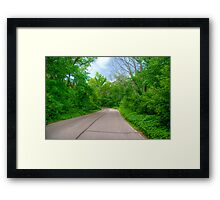 Arboretum Drive Framed Print