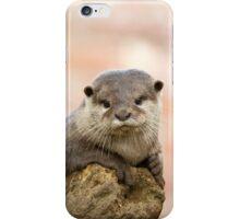 Otter 2 iPhone Case/Skin