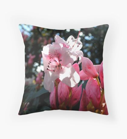 Blossoms Of Delicate Pink Throw Pillow