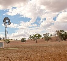 Windmill...Ploughed Paddocks... by mitpjenkeating