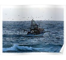 Trawler & sea birds Poster