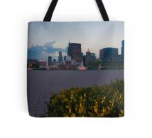 Buckingham Fountain with painted in light Tote Bag
