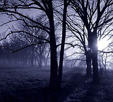 Dawn.... by charlena