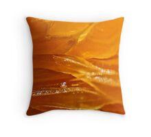 vesicles in an orange segment Throw Pillow