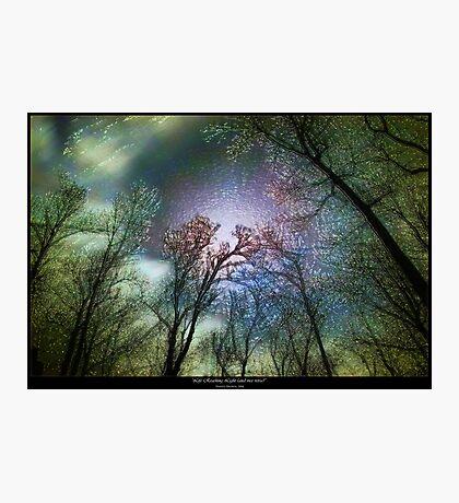 Life Reaching Light (and Vice Versa) Photographic Print