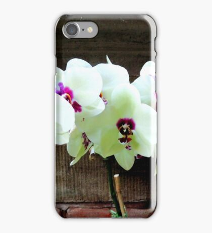 Orchids on Wood iPhone Case/Skin
