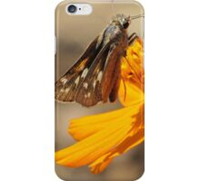 Skipper and September Flower iPhone Case/Skin