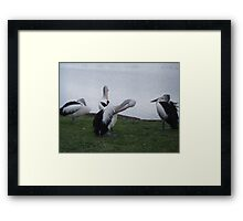 Who Stole My Cell Phone? Framed Print
