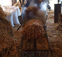 The Hay Through The Steam by Caity Sleeman
