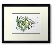 Green Beans  Framed Print