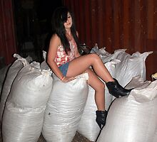 Sitting on the chaff bags. by Caity Sleeman