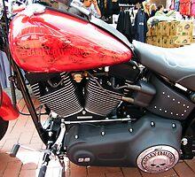 Stunning Harley by TREVOR34