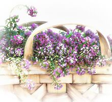 Basket of Flowers by CarolM