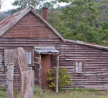 201003300539 Old Butchers shop and dwelling Harrietville by Fred Mitchell