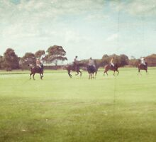 Polo Practice #3 by Tracy Edgar