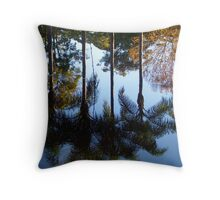 Late Afternoon Reflections. Throw Pillow