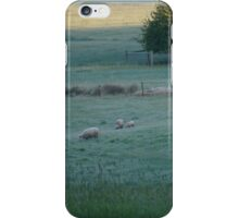 Sunrise in the valley iPhone Case/Skin