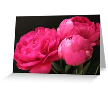 Love My Peony - set of two Greeting Card