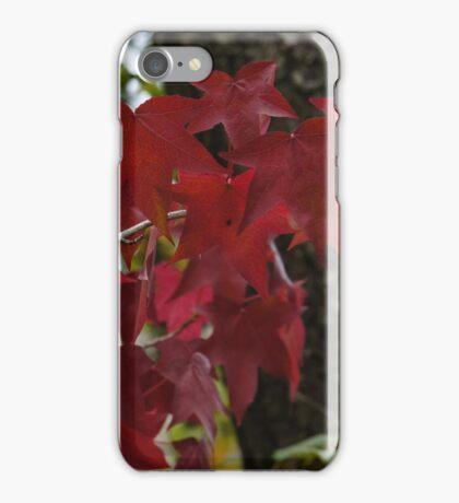 Autumn's annual fashion show iPhone Case/Skin